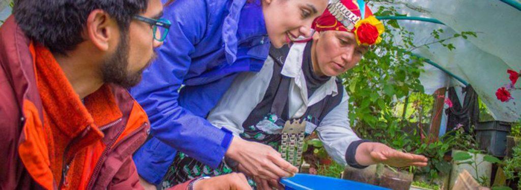 Sumérgete en la cultura mapuche lafkenche